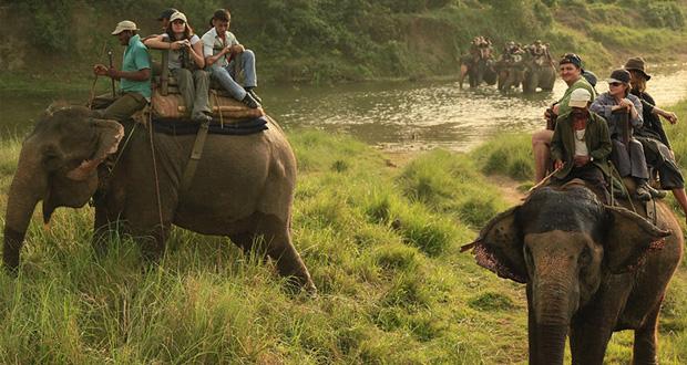 Chitwan National Park Chitwan Tiger Reserve Chitwan Tour